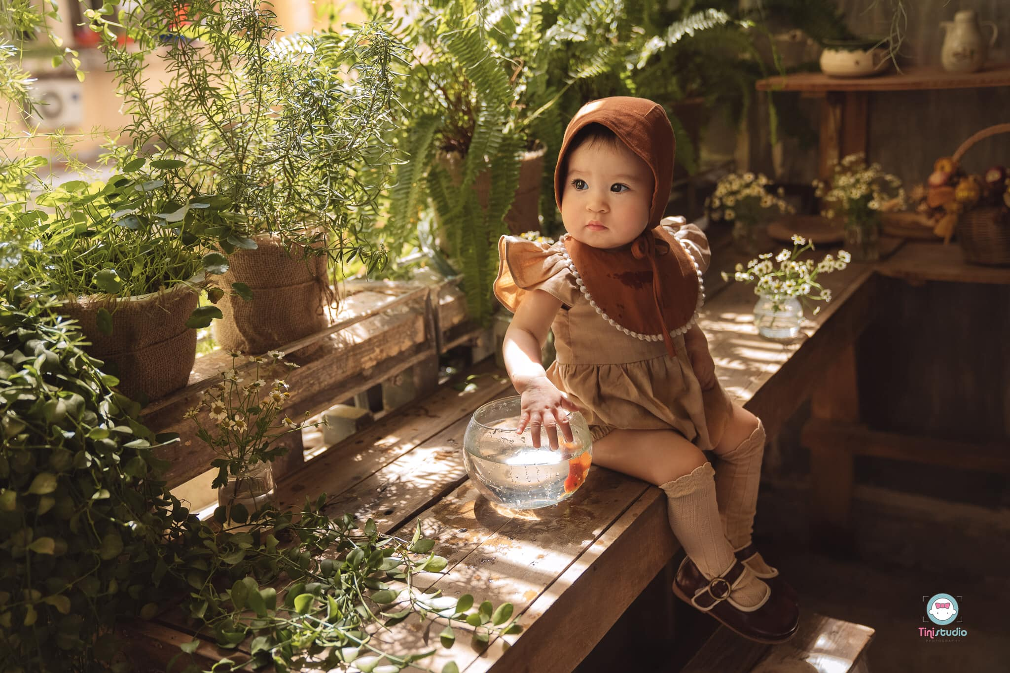 Top 7 Studio chụp ảnh cho bé đẹp và chất lượng nhất Cần Thơ - Tí Nị Studio