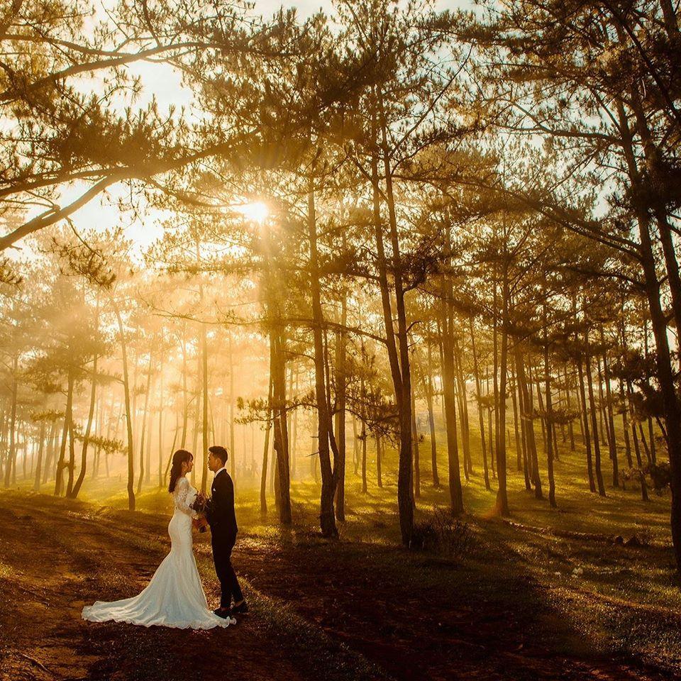 Xếp hạng 5 Studio chụp ảnh cưới đẹp nhất An Nhơn, Bình Định -  Quỳnh Anh Bridal