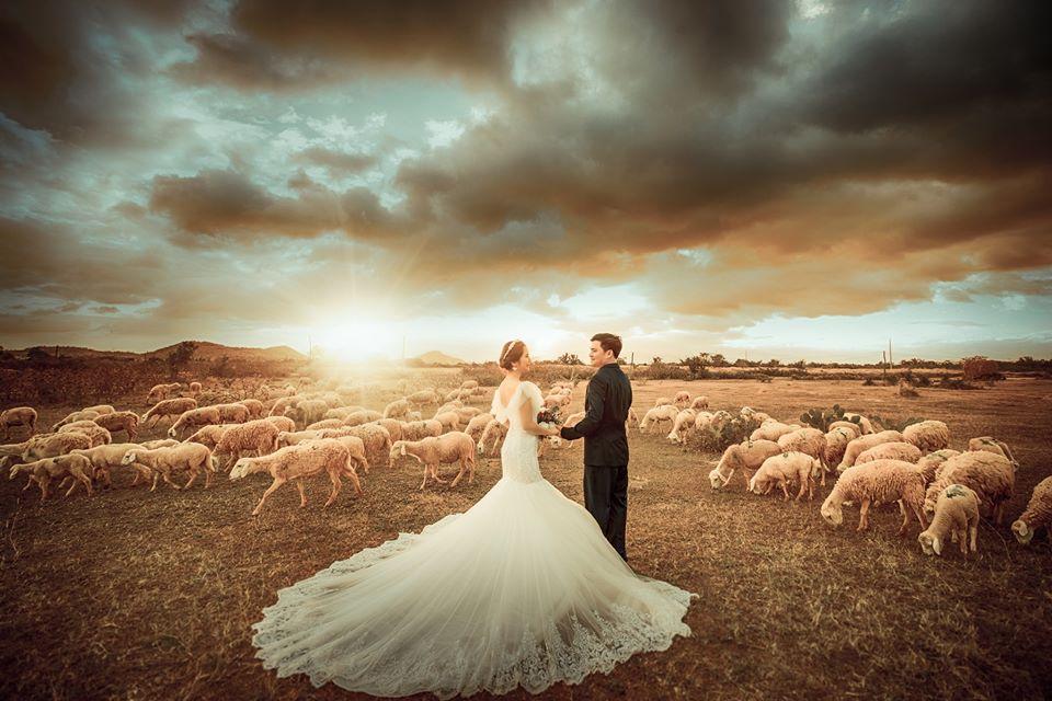 Xếp hạng 6 Studio chụp ảnh cưới đẹp nhất Ninh Thuận -  Hoàng Tuấn Wedding
