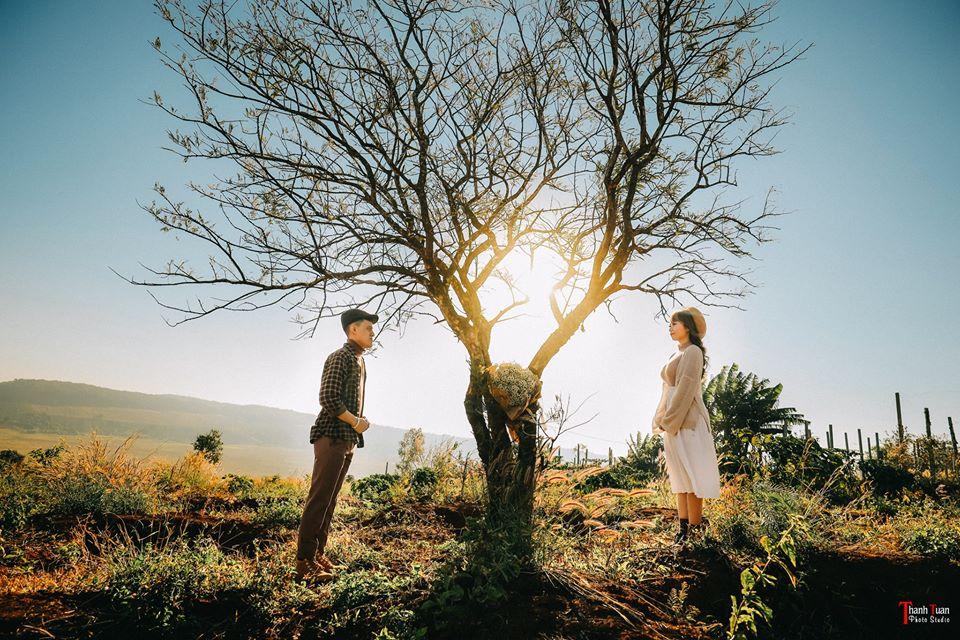 Xếp hạng 7 Studio chụp ảnh cưới ngoại cảnh đẹp nhất quận 2, TP. HCM -  Thanh Tuan Studio