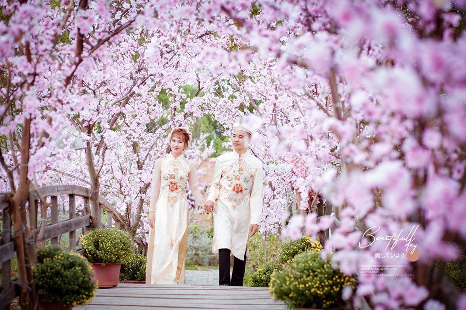 Xếp hạng 7 Studio chụp ảnh cưới phong cách Hàn Quốc đẹp nhất Hải Phòng -  ÁO CƯỚI NEW