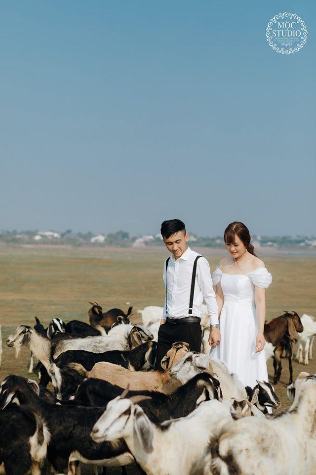 Xếp hạng 12 Studio chụp ảnh cưới đẹp nhất Gia Lai -  MỘC Studio