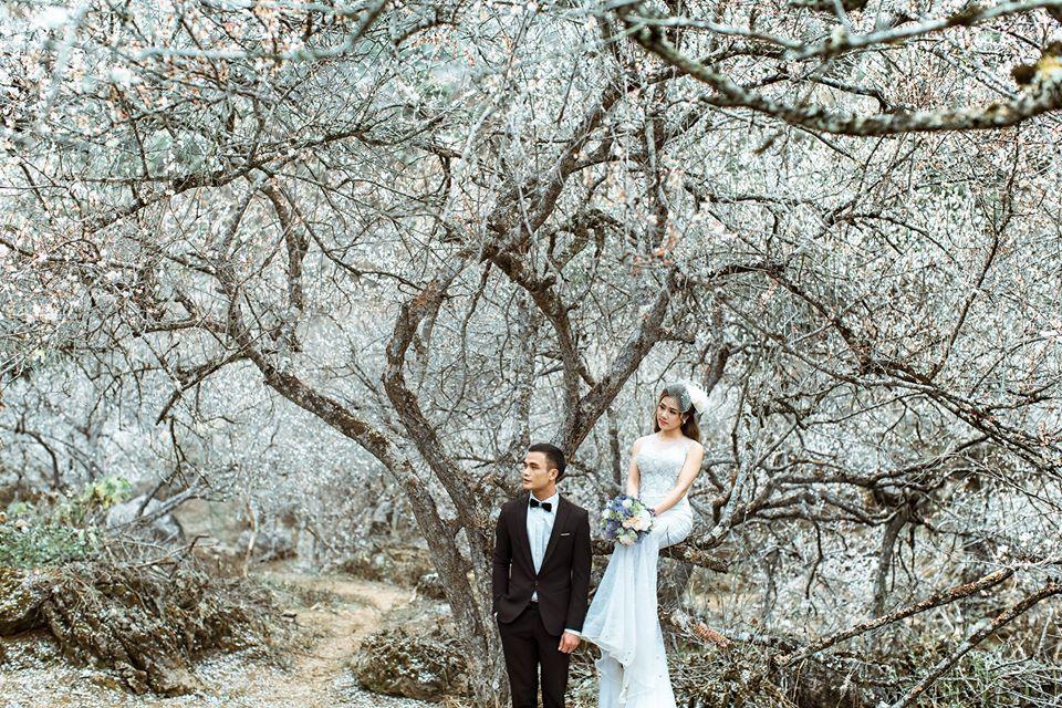 Xếp hạng 4 studio chụp ảnh cưới đẹp nhất ở Mộc Châu -  Trung Mộc Wedding - Mộc Châu